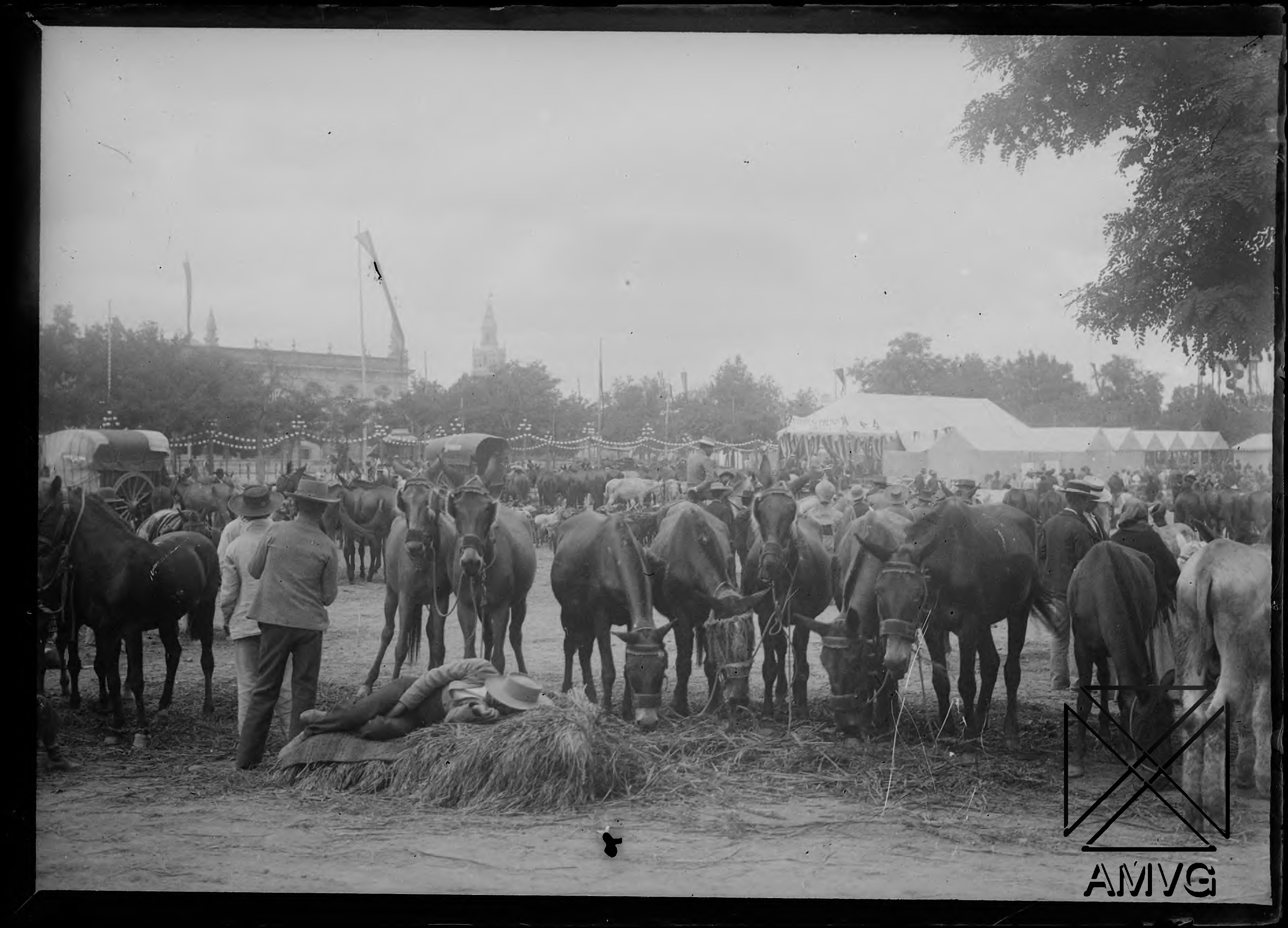 Hilera de caballos y público en la Feria de Sevilla