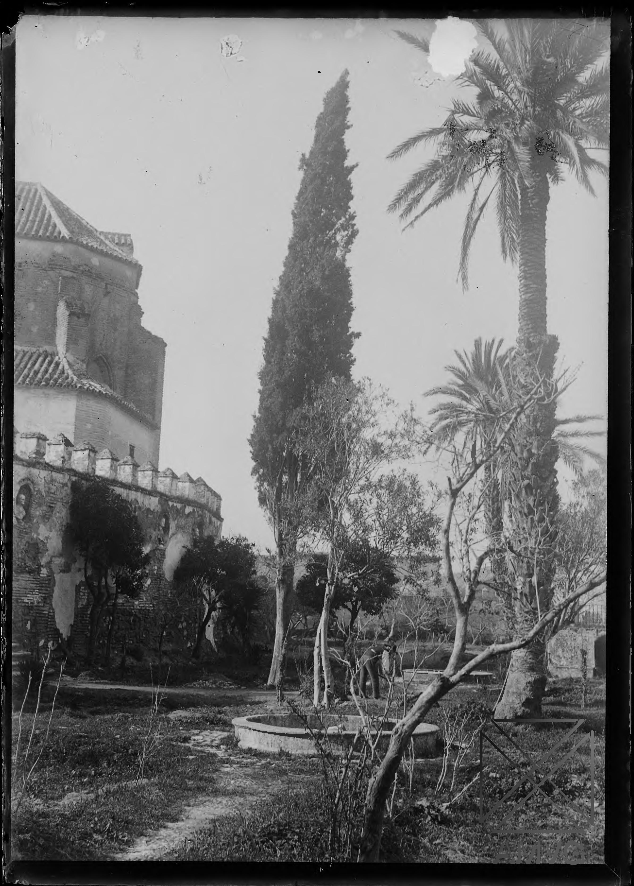 Jardines del Palacio de los Duques de Arcos. Marchena