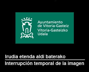imagen tomada por la cámara de Portal de Gamarra