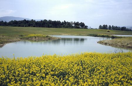 Las lagunas de Lezea y Zabalgana
