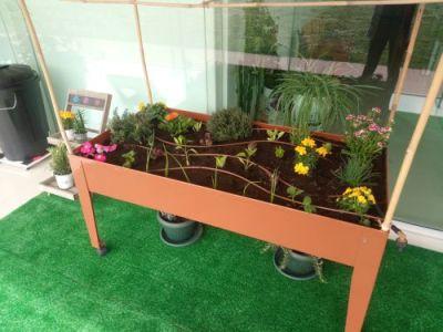 Mesa de cultivo de Ariznabarra
