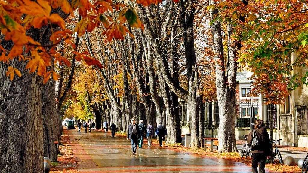 Turismo - Imagen del Paseo de la Senda