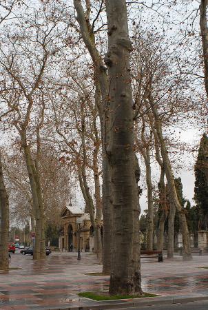 Portal cementerio