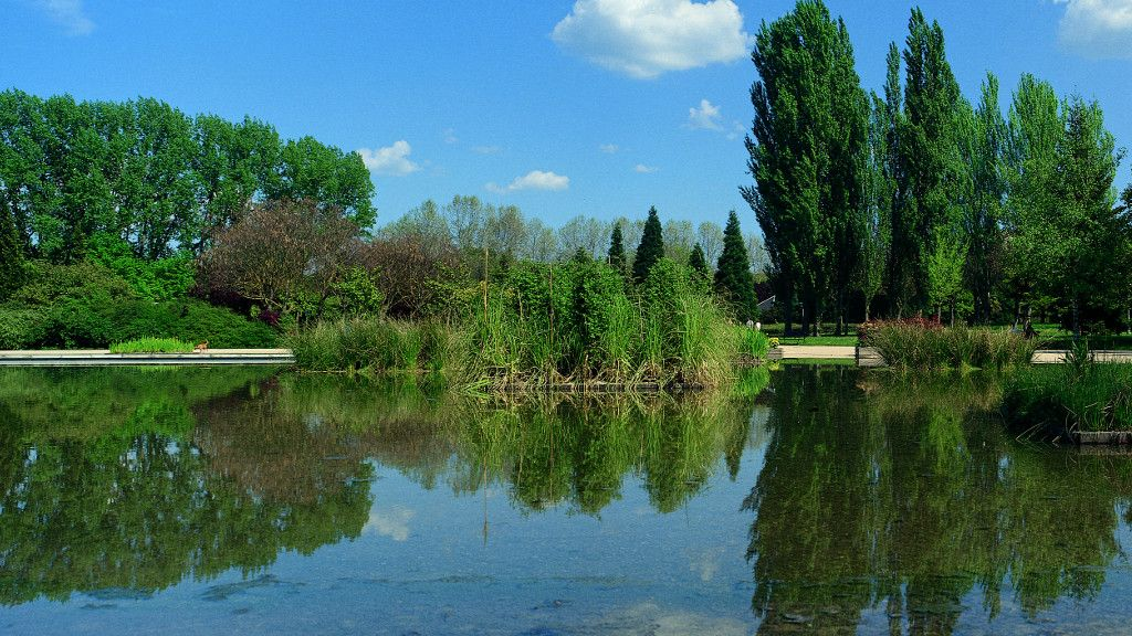 Parque de Arriaga - Turismo