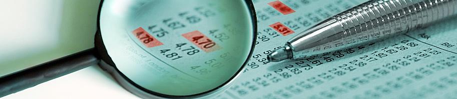 Plan de lucha contra el fraude fiscal