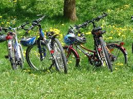 Imagen: marcha bicis