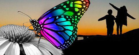Mariposa en una flor y dos niños haciendo el avión