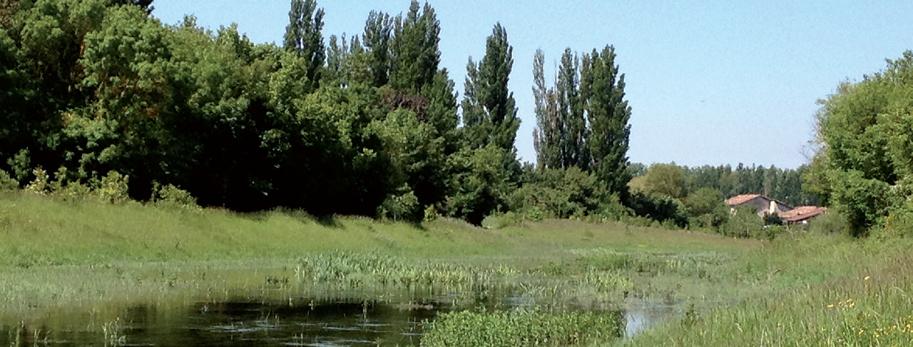 Zadorra river