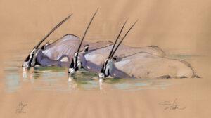 Oryx tres