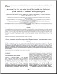 Atenuación de nitratos en el Humedal de Salburua (País Vasco). Contexto Hidrogeológico