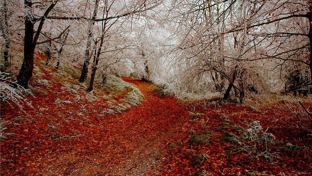 Turismo - Montes de Vitoria (Eloy Corres)
