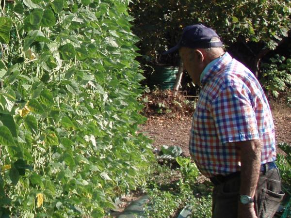 Agricultor con variedad local de caparrón