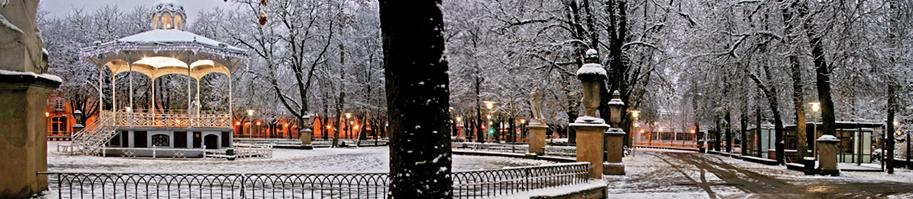 Movilidad en transporte público pese a la nieve