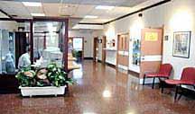 SERVICIO SOCIAL DE BASE DEL C.C. ARANA