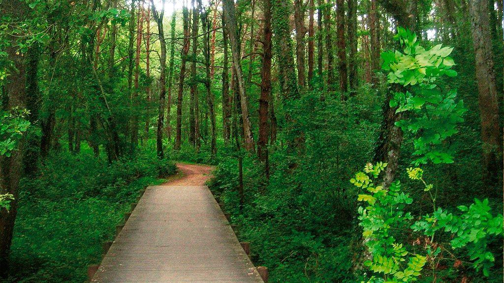Itinerarios verdes